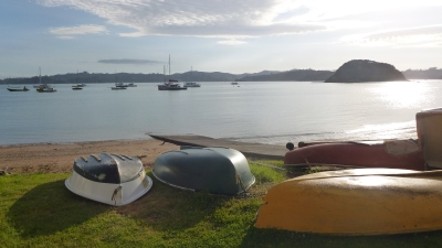 Paihia in the morning sun.