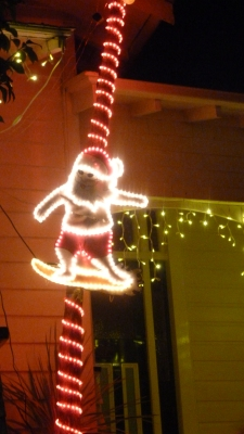Surfing Santa on a palm tree. Love it.